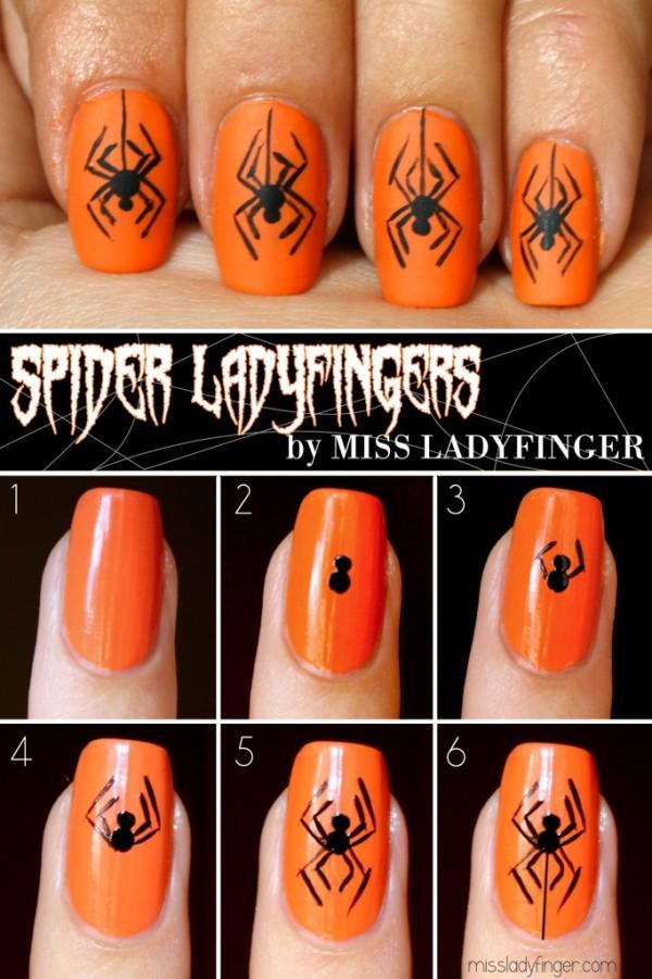 Spider-Ladyfingers-682x1024
