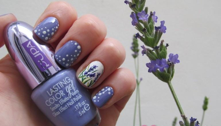 Lavender-Bloom-770x439_c