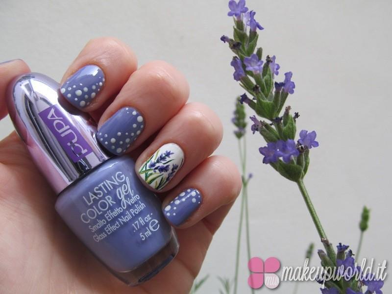 Lavender-Bloom-800x600
