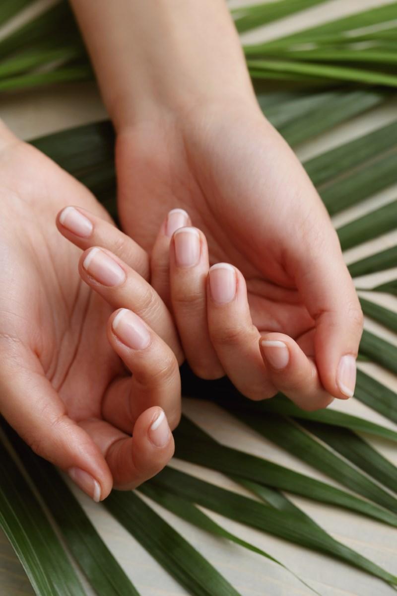 học nail có lợi nhuận cao
